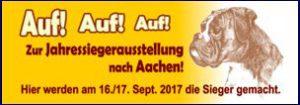 BK Veranstaltung 2017 Jahressiegerausstellung Aachen